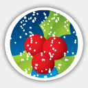 Icon: Merry Christmas Mistletoe, christmas-2009 dryicons, Pixel: 128 x 128 px