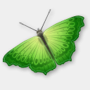 Icon: Butterfly, animals visualpharm, Pixel: 128 x 128 px